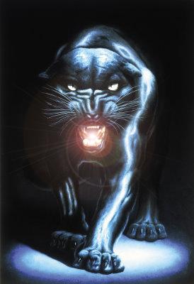 NataliaBlack, черная пантера( только добрая.